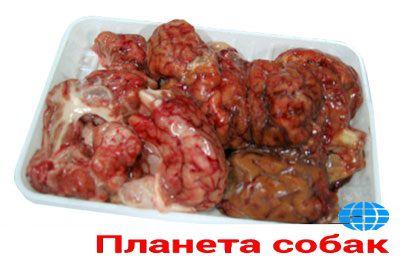 Мозги говяжьи